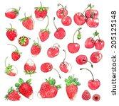 watercolor clip art... | Shutterstock . vector #205125148