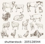 Farm Animals. Set Of Vector...