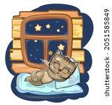 baby kitten sleeps in bed....   Shutterstock .eps vector #2051585849