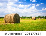 Landscape With Harvested Bales...