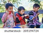 chiang mai thailand december 8  ... | Shutterstock . vector #205194724