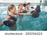 smiling female fitness class... | Shutterstock . vector #205256323