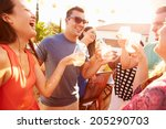 group of young people enjoying... | Shutterstock . vector #205290703