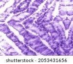 Animal Fur Background. Violet...