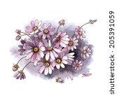 bouquet of daisies. watercolor...   Shutterstock . vector #205391059