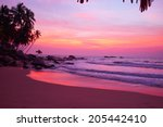Stock photo sunset on the beach 205442410