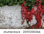 Huge Old White Wall With Red...