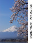 an image of fuji and sakura | Shutterstock . vector #205552258