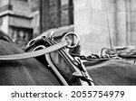 Small photo of Black and white fiacre in Vienna, Austria