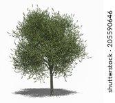 3d computer rendered... | Shutterstock . vector #205590646