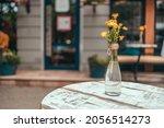 beautiful delicate yellow... | Shutterstock . vector #2056514273