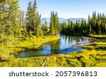 Small photo of Forest river on the edge of the forest. River in forest. Forest river view