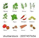 large vector set of popular...   Shutterstock .eps vector #2057457656