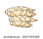 vector abstract  soft focus of...   Shutterstock .eps vector #2057494289