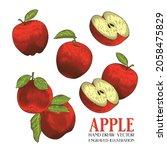 apple hand draw vector ... | Shutterstock .eps vector #2058475829
