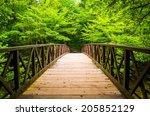 Walking Bridge Over A Stream ...