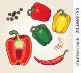 vector set of hand drawn... | Shutterstock .eps vector #205869793