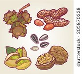 Vector set of hand drawn nuts.