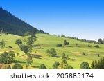 green hills with trees under... | Shutterstock . vector #205885174