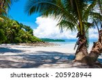 beautiful tropical beach with...   Shutterstock . vector #205928944