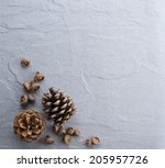 Pine Cone On Rock Table As...
