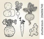 hand drawn illustration set of ... | Shutterstock .eps vector #206006740