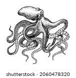 sea octopus. engraved hand... | Shutterstock .eps vector #2060478320