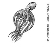 sea octopus. engraved hand... | Shutterstock .eps vector #2060478326