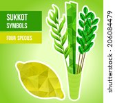 four species   palm  willow ... | Shutterstock .eps vector #206084479