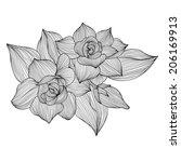 elegant decorative gardenia... | Shutterstock .eps vector #206169913
