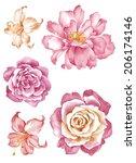 watercolor illustration flower... | Shutterstock . vector #206174146