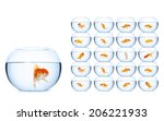 Fish In Fishbowls  Isolated On...