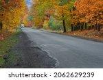 Asphalt Road In The Autumn...
