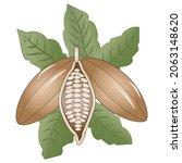 cocoa vector illustration for... | Shutterstock .eps vector #2063148620