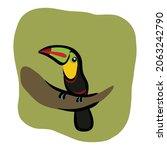 tucan bird sitting on a tree... | Shutterstock .eps vector #2063242790
