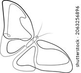 butterfly  bug  logo abstract... | Shutterstock .eps vector #2063256896