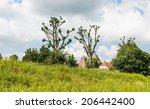 Dutch Historic Castle...