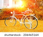 evening sunshine at nature and... | Shutterstock . vector #206465164