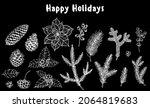 christmas plants. fir cones ...   Shutterstock .eps vector #2064819683