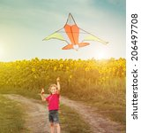 happy little girl witha kite in ... | Shutterstock . vector #206497708