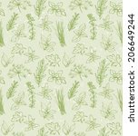 fresh herbs seamless background ... | Shutterstock .eps vector #206649244
