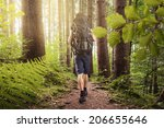 hiking | Shutterstock . vector #206655646