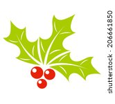 Holly berry plant symbol of Christmas. Vector illustration - stock vector