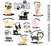 animal,black,boston,breed,bull,canine,cartoon,chihuahua,cute,dachshund,dog,domestic,graphic,head,husky