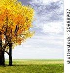 autumn scenery | Shutterstock . vector #20688907