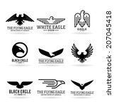 eagles  15  | Shutterstock .eps vector #207045418