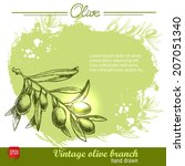 hand drawn olive branch... | Shutterstock .eps vector #207051340
