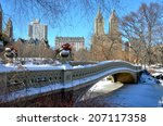 central park  new york city bow ... | Shutterstock . vector #207117358
