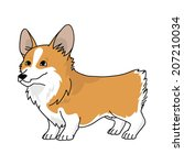 Corgi stock vectors - keyword analysis for popular searches