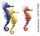 three seahorse on white... | Shutterstock .eps vector #207277480